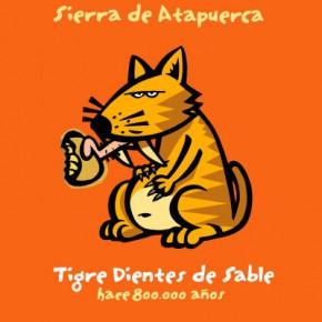 Tigre dents de sabre dibuix per a samarreta i postal